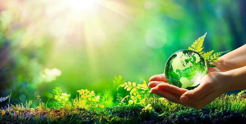 Qioptiq Deutschland ist durch Maßnahmen zur Treibhausgasreduktion und den Erwerb von Klimaschutzzertifikaten jetzt klimaneutral