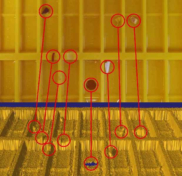 Das von Bi-Ber entwickelte Reflexsystem erkennt Defekte und Fremdkörper sehr genau (oben: Farbaufnahme mit Testobjekten, unten: 3D-Aufnahme)